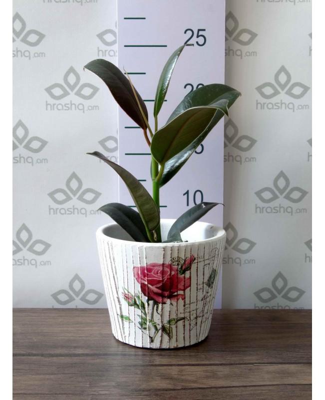 Կերամիկական ծաղկաման վարդ