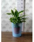 Кашпо для орхидей Coubi Orchid A