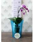 """Кашпо для орхидей """"Тиса"""", бирюзовый"""