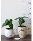 Кофе Арабика в керамической чашке, 17 см